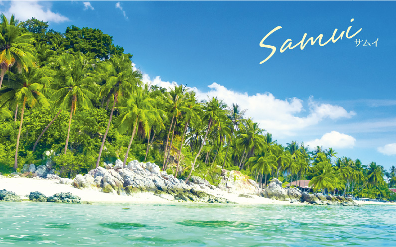 head_samui