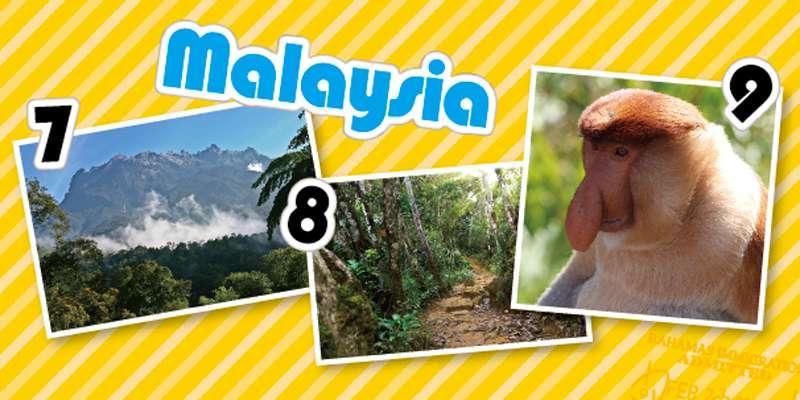 7.ボルネオ島にそびえ立つ標高4095mのキナバル山 8.キナバル公園をトレッキング。大自然を肌で感じて 9.ジャングルクルーズツアーではテングザルとの出会いも