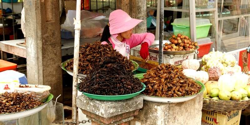 70度の油で15〜30分かけて揚げることで虫の体内にいる菌を死滅させます