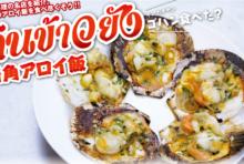 【第46食】お得な価格で味わう5つ星の屋台料理