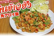 【第66食】タイ風ソーセージの具だくさんサラダ