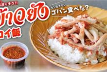 【第116食】秘伝の調味料が決め手 ジューシーな絶品豚丼