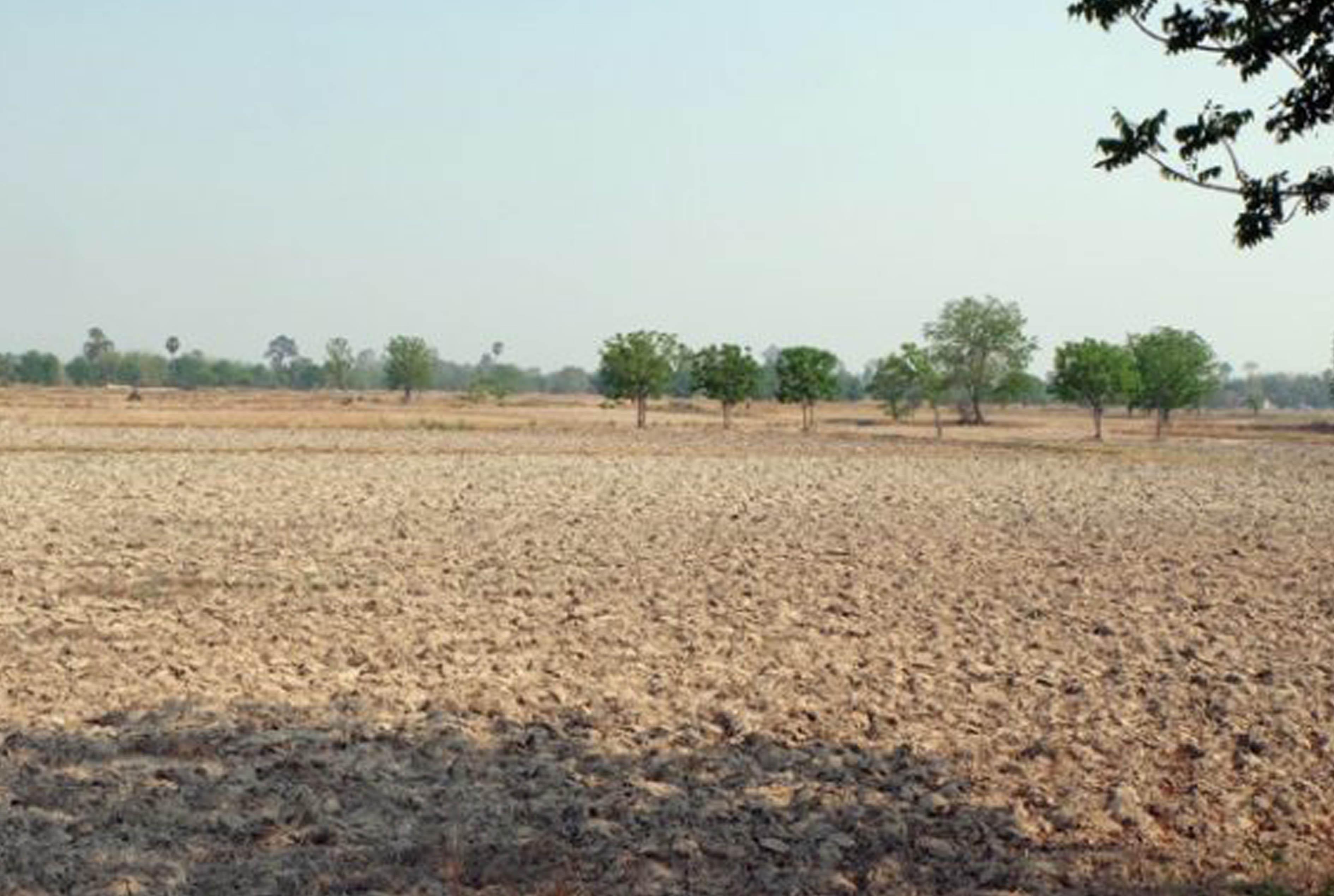 タイの干ばつ問題