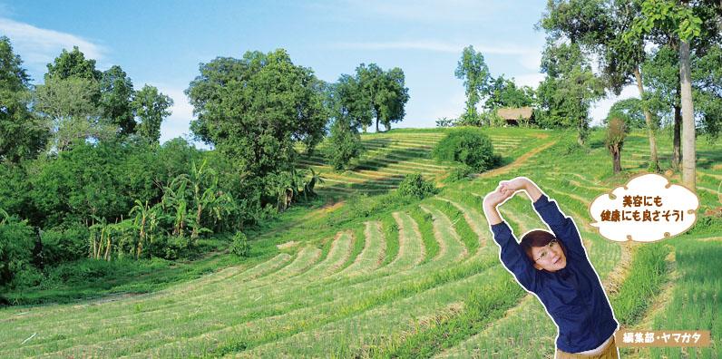 VOL.81 : Nature Future Farm