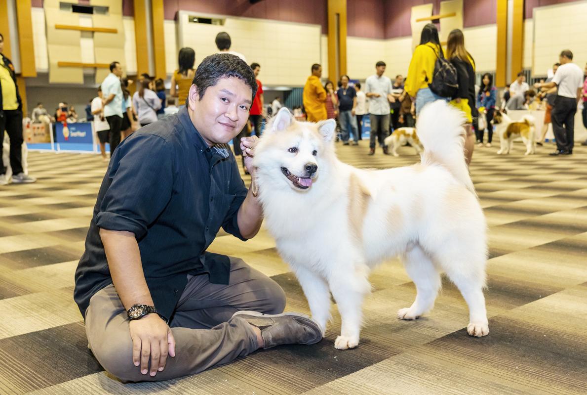 固有犬種「バンゲーオ」と共に 世界へ挑むドッグブリーダー - ワイズデジタル【タイで生活する人のための情報サイト】
