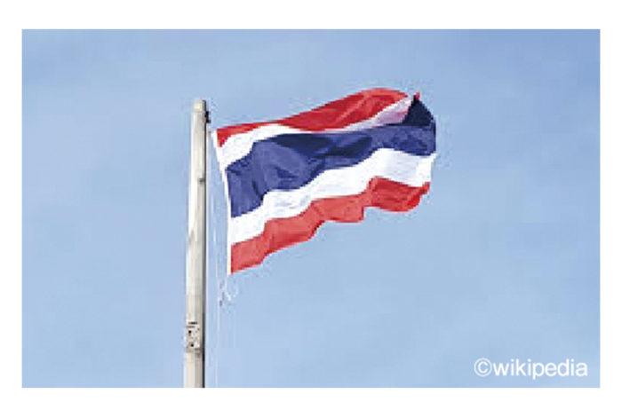 タイの国旗は赤・白・紺色の3色5本の横縞から成る三色旗で、「トン・トライロング」と呼ばれています。これは王朝史上初の海外留学を果たした国王ラマ6世によってデザインされ、1917年より導入されました。赤は「国家」、白は「仏教」、紺色には金曜生まれの国王の誕生色を用いることで「王室」の意味が込められ、中央に配された紺色の帯は他の4本よりも2倍の幅があります。  またタイには1日2回、国歌を流す習慣がありますが、併せて毎日8時に国旗を掲揚し、18時に降納することも定められています。