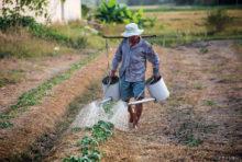 """「エネルギーはすべての国における経済発展の根幹」と潘基文前国連事務総長がいう通り、エネルギー施策は国の繁栄を大きく左右する。タイでもエネルギー施策は重要案件とされており、7月末にはエネルギー政策「Energy for All(すべての人にエネルギーを)」がぶち上げられた。  これは、地元住民らでつくる地域コミュニティが豊富な農業廃棄物を燃料とする再生可能発電事業を営めるよう推進するもの。最終的には、低所得者でも十分に電力を使用できるよう、インフラを整備したい考えだ。  政策の実現に向け、タイ国家エネルギー政策委員会(NEPC)は9月11日、地域コミュニティによる電力プロジェクトを承認。国営企業と民間企業が地域コミュニティと合弁で事業を展開し、太陽光発電所やバイオマス発電所などの再生可能エネルギープロジェクトを運営できるようになった。プロジェクトには民間企業の他、タイ王国発電公社(EGAT)と地方配電公社(PEA)も投資できる。  このプロジェクトには多くのメリットが挙げられる。代替エネルギーの開発が進めば、PM2.5などによる大気汚染が改善。そして、長期的には電力コストが削減されれば、地方住民に安価な電力が供給されることになる。さらに、地域コミュニティは燃料となる原材料や余剰電力を販売することで収入を生み出し、発電所の株を所有する地元住民に還元することも可能だ。  プロジェクトの資金については、当初は民間企業に100%投資させ、2〜3年目は地域コミュニティが省エネルギー促進ファンドから融資を受け、民間企業と共に30〜40%を投資するとの道筋を示す。開発コストは、1案件につき約2〜3億バーツ、1世帯ごとの年間収入は15万9,000バーツに上る見通し。今年末には最初の試験プロジェクトを立ち上げ、2022年までに事業を開始する方針だ。  環境や貧困、エネルギーの問題を同時に解決し得る""""一石三鳥""""の同政策。さらなる経済発展の起爆剤となるか、注目が集まる。"""