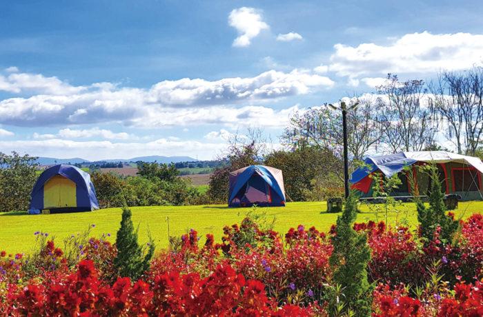 11月から2月の間はテントも用意。手軽にキャンプ気分を味わえます♪