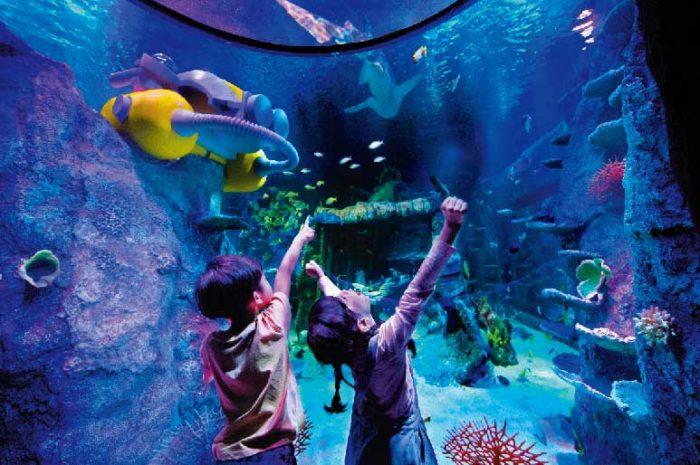 今年、水族館が新設! 進化するトイパーク マレーシア・ジョホールバル レゴランド