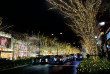 師走である。日本の12月は冬がどんどんと深まり、陽が短くなってくる。道をゆく人々もどこかせわしない感じで、新しい年を向ける準備に忙しい。そんな暮れの独特な雰囲気の中、東京の各所でもクリスマスのイルミネーションが輝き始めている。