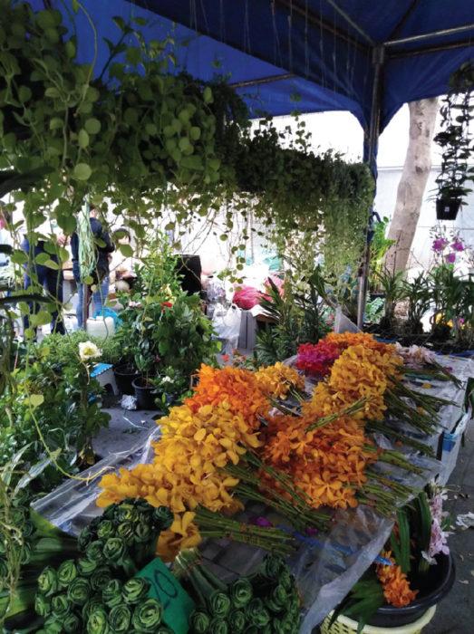 雑貨エリア 子どものおもちゃや食器、コスメ、中には植物など、さまざまな日用雑貨を扱うお店が集まっています
