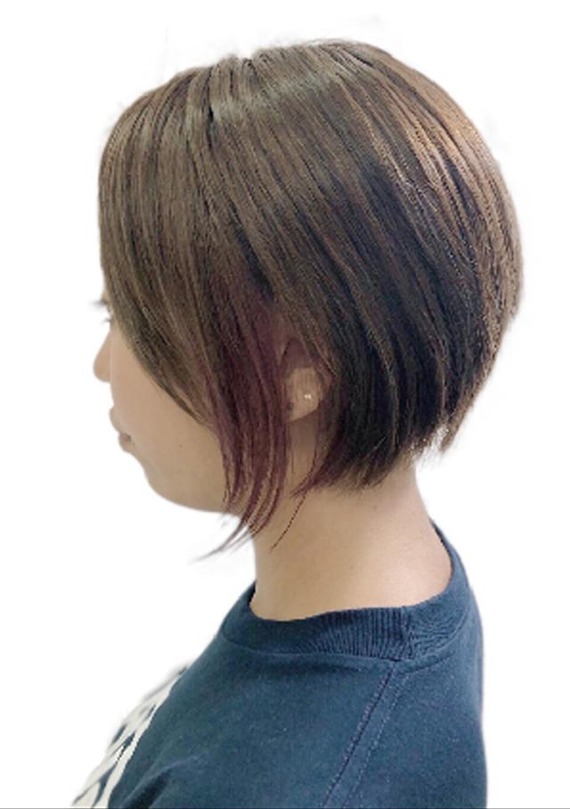 ヘアスタイル カラー アッシュブラウン × インナーパープル - Hair Style Ash brown × Inner purple - 3,200B〜(インナーブリーチ込み)