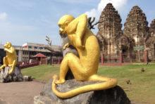 観光客の減少で餌がなくなり猿が凶暴に ロッブリー県