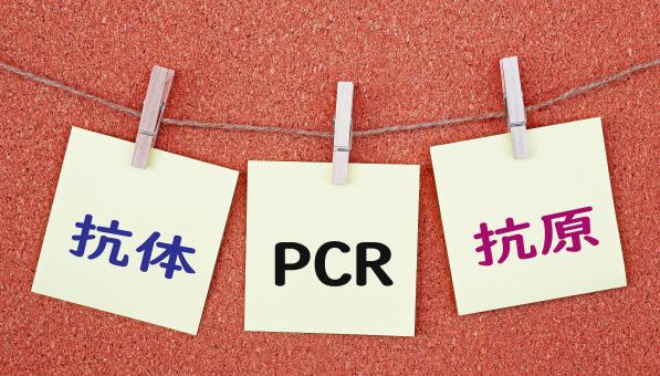 タイから帰国した韓国人が PCR検査で陽性反応 - ワイズデジタル【タイで生活する人のための情報サイト】