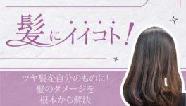 ツヤ髪を自分のものに! 髪のダメージを根本から解決 2,000B〜 - ワイズデジタル【タイで生活する人のための情報サイト】