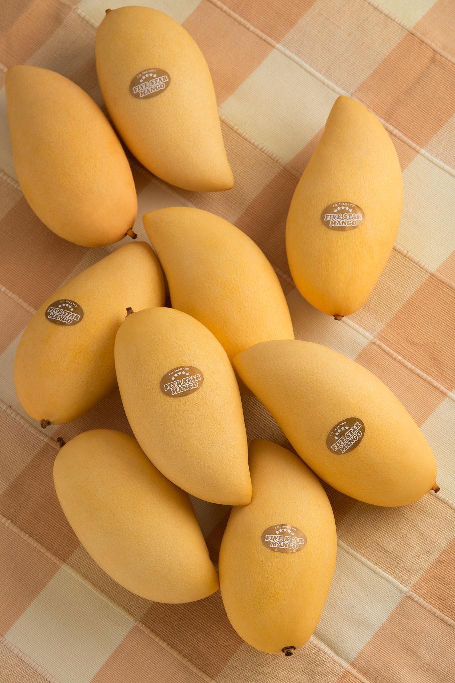 """ナムドークマイ種【ベストシーズン:3〜5月】最もポピュラーで、タイ産マンゴーを代表する最高品種。 「ナムドークマイ」とはタイ語で""""花の雫""""を意味し、その果実の形から名付けられたもの。 やや肌色がかった選抜種「ナムドークマイ・シートン」などがあり、芳醇な香りとコク、まろやかな甘さが特徴。"""