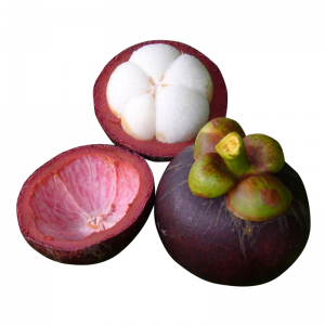 """マンゴスチン【ベストシーズン:4・5月】全国No.1の生産量を誇る東部・チャンタブリー県の他、タイ南部でも生産されるマンゴスチン。真っ白な果肉の爽やかな酸味と甘さが絶妙なバランスで調和し、その上品な味わいから""""果物の女王""""とも賞されています。雨季(例年6月〜)にさしかかるにつれ品質が落ちてしまうため、最も美味しい時期に日本へ贈るなら4・5月がベストタイミング。"""