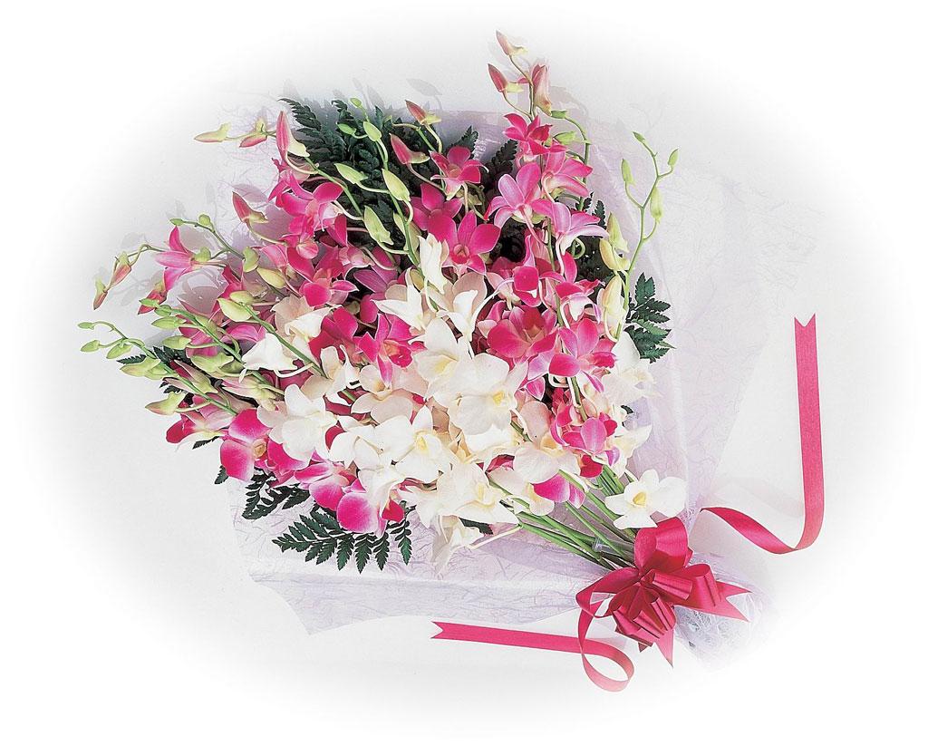 洋ラン(デンファレ)【ベストシーズン:通年】世界の生産量のおよそ8割を占め、通称「デンファレ」と呼ばれるタイの洋ラン。 日本への贈答用には可憐なピンクやホワイト、濃紫系など色とりどりの花びらをミックスした切り花タイプが一般的で、到着後10〜14日ほど、冬場なら1カ月ほど見頃が続きます。 南国・タイらしいエキゾチックなオーラをまとい、5月9日の「母の日」、6月20日の「父の日」のプレゼントとしても喜ばれるでしょう。