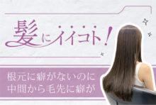 これはアイロンによる熱酸化の癖です。活性酸素除去をすれば髪がツヤ髪に若返るだけでなく、アイロンで出来た髪の毛のシワも直せます。さらに白髪の予防にもなります。