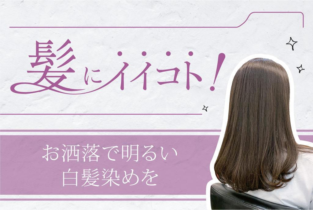 お洒落で明るい白髪染めを 2,500B・200B - ワイズデジタル【タイで生活する人のための情報サイト】