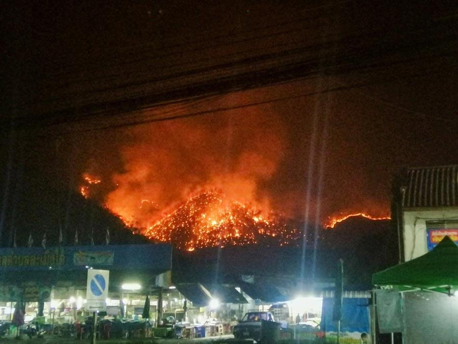 山火事発生は3月29日、午後8時頃。火災は急速に広がり、陸上での消火活動とともにヘリコプターによる空中消火も行われたが鎮火させるのは困難だったという。