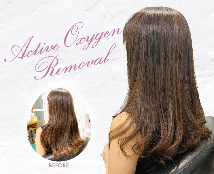 ヘアスタイル 活性酸素除去 - Hair Style Active Oxygen Removal - 200B ※水素濃度2倍400B・3倍600B