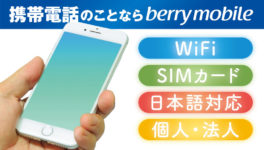 相談から契約まですべて日本語でOK! タイで生活する日本人のための携帯電話サービスなら! berry mobile【a2network (Thailand) Co., Ltd.】 - ワイズデジタル【タイで生活する人のための情報サイト】
