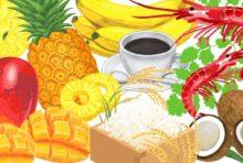 FSMA(米国食品安全強化法)
