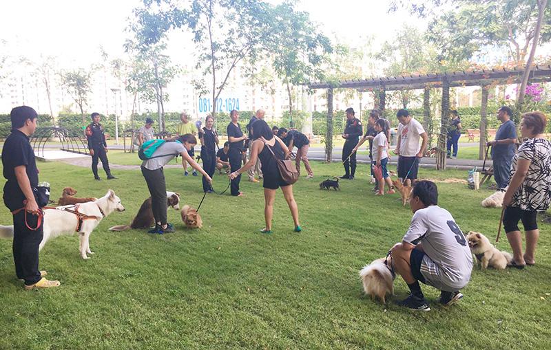 BMA Dog Park(BMAドッグ・パーク) - ワイズデジタル【タイで生活する人のための情報サイト】