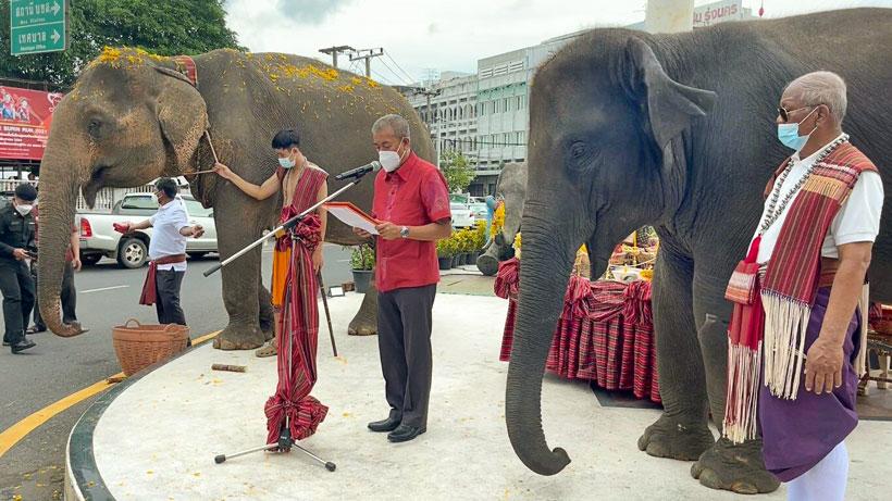 18年前に南部クラビー県で盗まれて消息不明だったゾウの「パン・ヨー(写真左)」が故郷である東北部スリン県に帰還。9月30日には県知事や関係者が集まり歓迎式典が開催された。